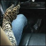 Alexis Driving the Coronet in Gloves & Boots