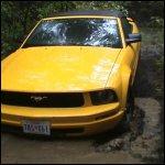 Lee Lost & Stuck in Convertible Mustang, 1 of 2