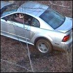 Scarlet Stuck in the Mustang – #006b